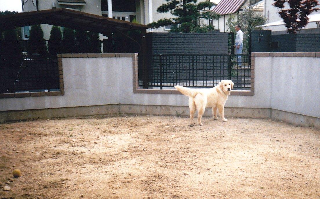 19930505_3