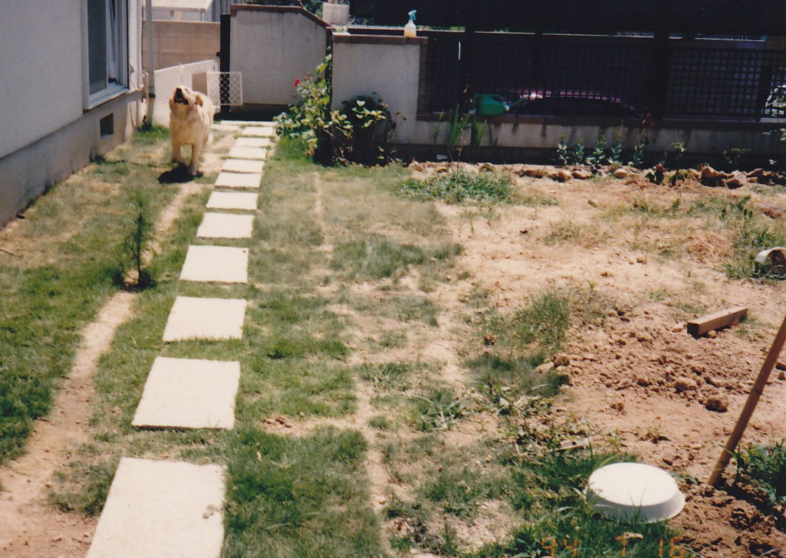 19940716_a